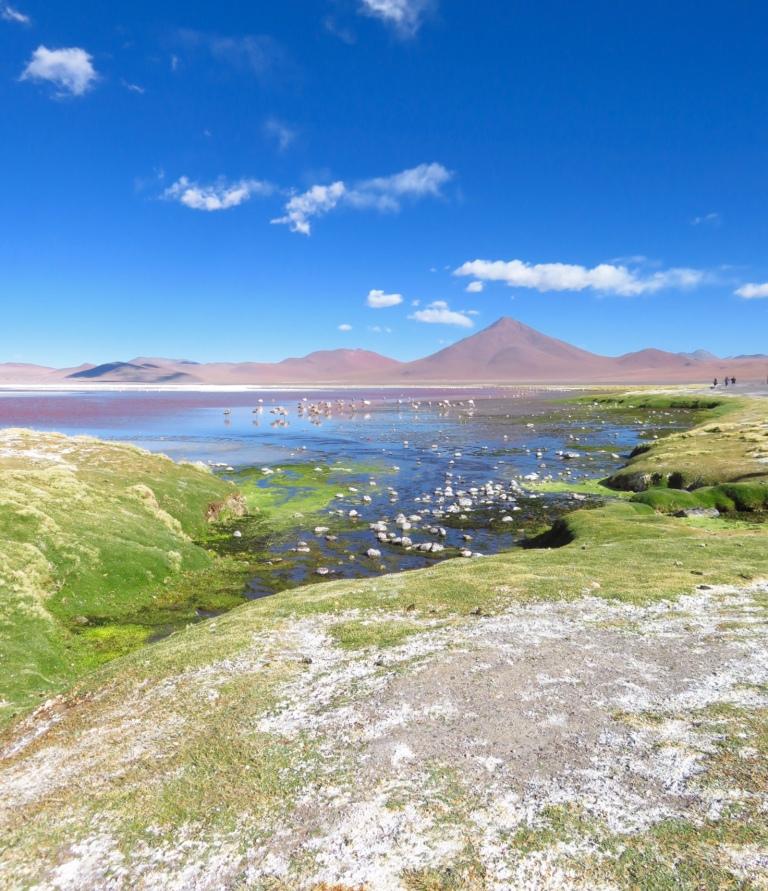 Coloured Lagoon, Bolivia