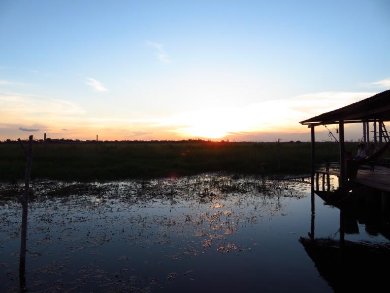 Las Pampas at Sunset, Bolivia HB